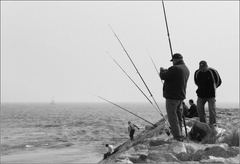 Pescadores - Sant Adrià de Besòs - Barcelona
