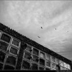 Sobre el Cementerio - Barcelona