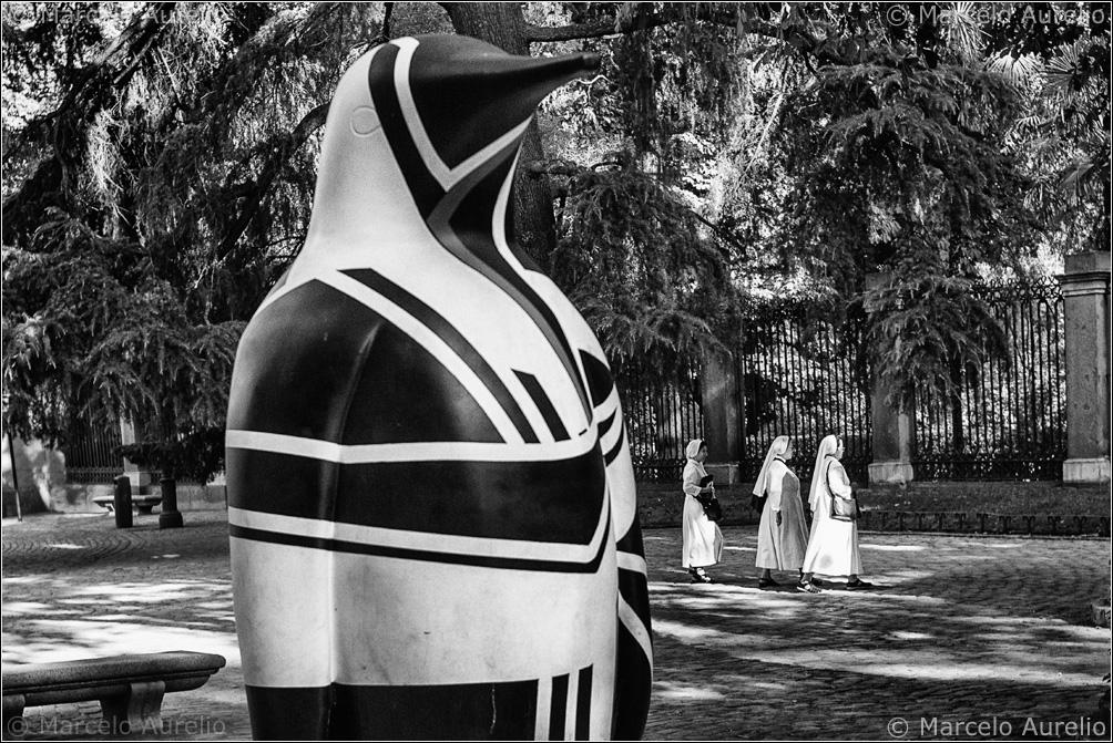 Pingüinos - Madrid