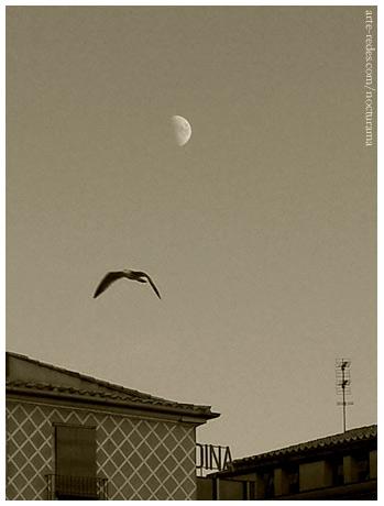 por Girona