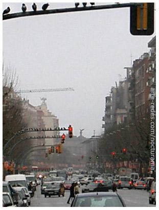 en el semáforo, Barcelona