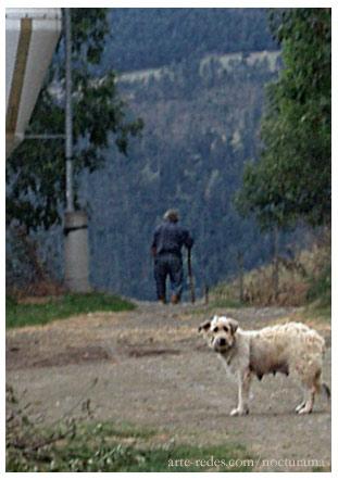 Don Josep y su perra, Queralbs, desde el Jardín de Ferrán.