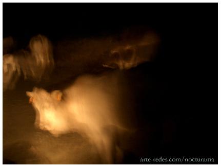 vacas, apariciones en las montañas de noche, Pirineos