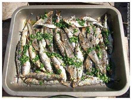 sardinas - Crowded - Photo Friday